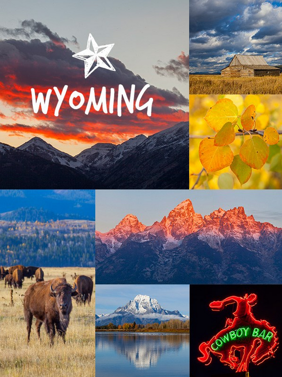 wyoming collage for moodle design
